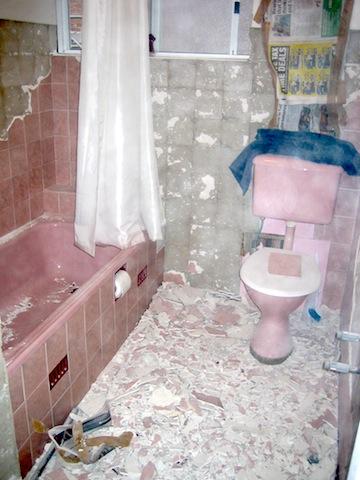 1st bathroom reno mess